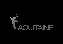 InfleXsys Entreprise de Services du Numérique Partenaires institutionnels Digital Aquitaine