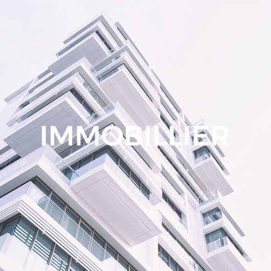 InfleXsys expertise sectorielle immobilier
