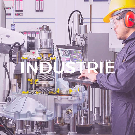 InfleXsys expertise sectorielle industrie